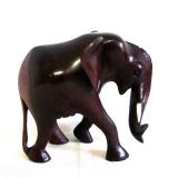 Elefant aus Afrika