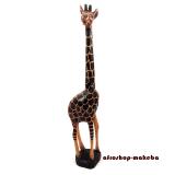 Afrikanische Giraffe