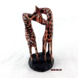 Giraffe, Giraffen-Paar aus Afrika