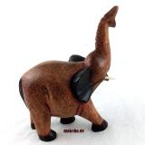 Elefant, trompetend, Sese-Holz, Afrika, Ghana